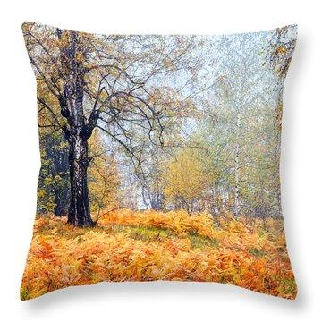 Autumn Dreams Throw Pillow by Evgeni Dinev