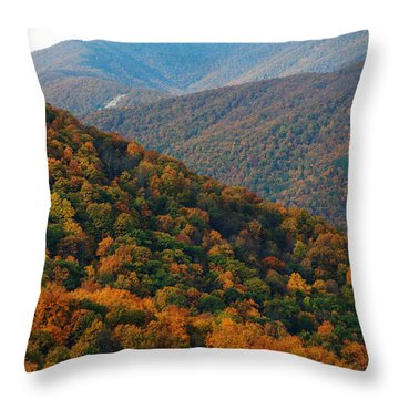 Autumn Drive Throw Pillow by Kelvin Booker