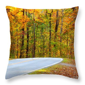 Throw Pillow featuring the photograph Autumn Drive by Lydia Holly