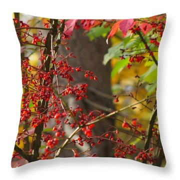Throw Pillow featuring the photograph Autumn Excellence 6181 by Maciek Froncisz