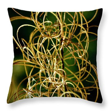 Throw Pillow featuring the photograph Autumn Fireweed by Albert Seger