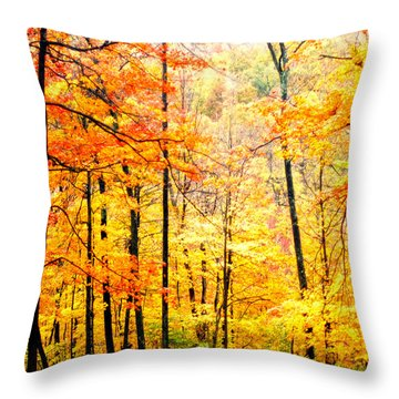 Throw Pillow featuring the photograph Autumn Forest by Randall Branham