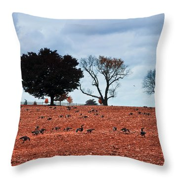 Autumn Geese Throw Pillow by Bill Cannon
