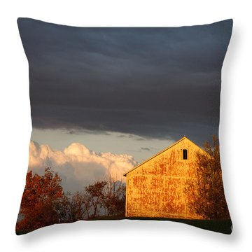 Throw Pillow featuring the photograph Autumn Glow With Storm Clouds by Karen Lee Ensley