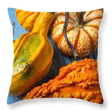 Autumn Gourds Still Life Throw Pillow