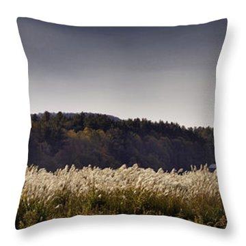 Autumn Grasses - North Carolina Autumn Scene Throw Pillow by Rob Travis