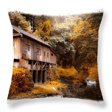 Autumn Grist Throw Pillow by Steve McKinzie