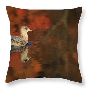 Autumn Gull Throw Pillow by Karol Livote