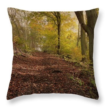 Autumn In Brantingham Woods Throw Pillow