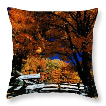 Autumn In Holderness Throw Pillow
