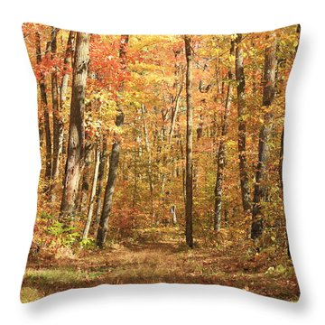 Throw Pillow featuring the photograph Autumn In Minnesota by Penny Meyers