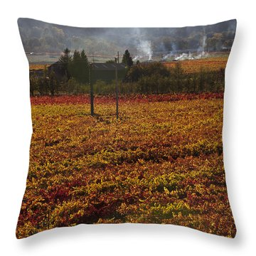 Autumn In Napa Valley Throw Pillow by Garry Gay