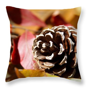 Autumn In Russet Throw Pillow