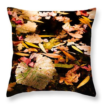 Autumn In Texas Throw Pillow