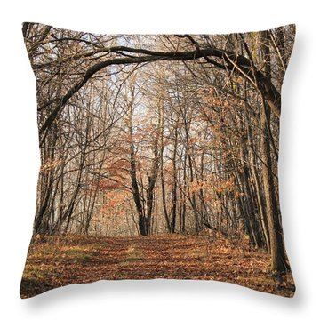 Throw Pillow featuring the photograph Autumn In The Woods by Penny Meyers