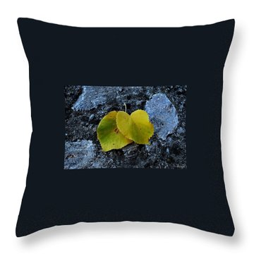 Throw Pillow featuring the photograph Autumn Is My Love by Marija Djedovic