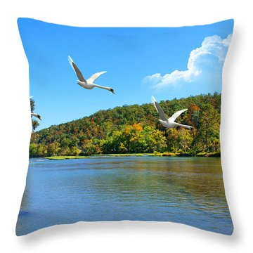 Autumn Landing Throw Pillow