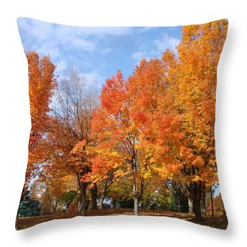 Throw Pillow featuring the photograph Autumn Leaves by Athena Mckinzie