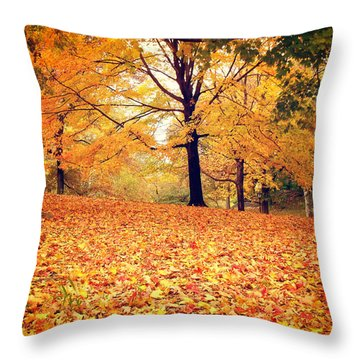 Autumn Leaves - Central Park - New York City Throw Pillow by Vivienne Gucwa