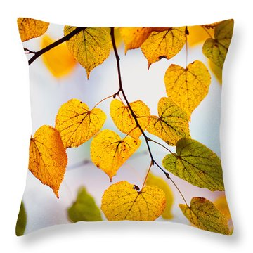Autumn Leaves Throw Pillow by Jenny Rainbow