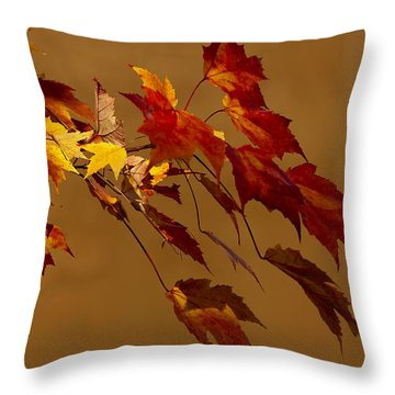 Throw Pillow featuring the photograph Autumn Leaves by Judy  Johnson