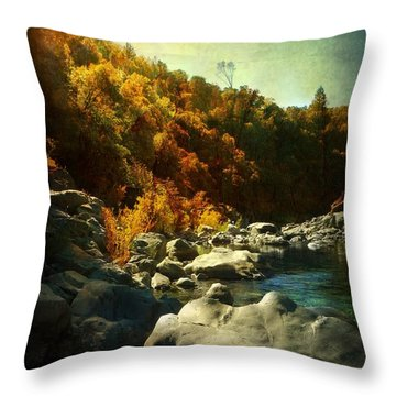 Autumn Lights Throw Pillow by Leah Moore