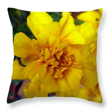 Autumn Marigold 2 Throw Pillow by Alys Caviness-Gober