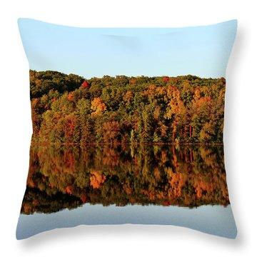 Throw Pillow featuring the photograph Autumn Mirror by Rachel Cohen