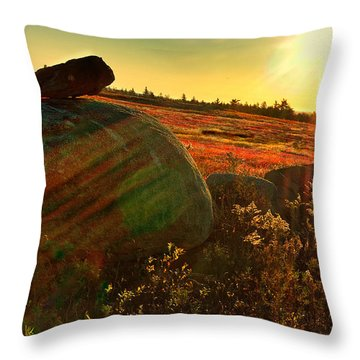 Autumn Morn In The Berry Field Throw Pillow