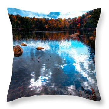 Autumn On Cary Lake Throw Pillow by David Patterson