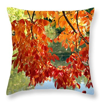 Autumn On The Pond Throw Pillow by Jo Sheehan