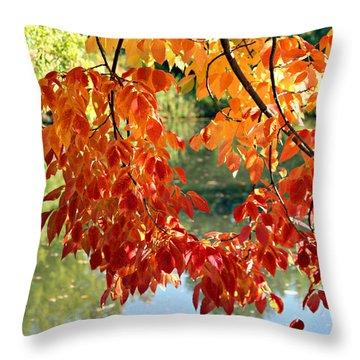 Autumn On The Pond Throw Pillow