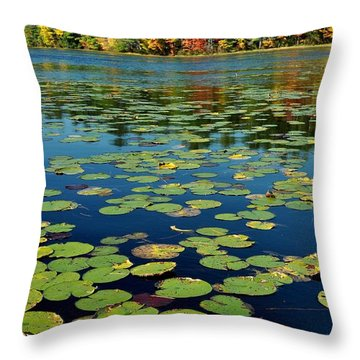 Autumn On The River Throw Pillow by Rick Frost