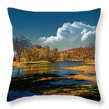 Autumn On The South Fork Throw Pillow