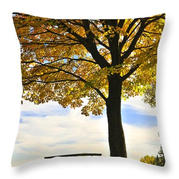 Autumn Park Throw Pillow by Elena Elisseeva