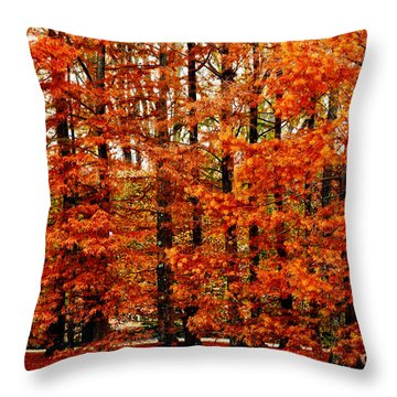 Autumn Red Maple Landscape Throw Pillow by Carol F Austin