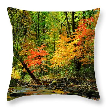 Autumn Reflects Throw Pillow by Frozen in Time Fine Art Photography
