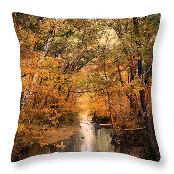 Autumn Riches 2 Throw Pillow by Jai Johnson