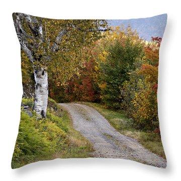 Autumn Road - D005840 Throw Pillow by Daniel Dempster