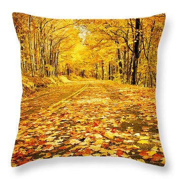 Autumn Road Throw Pillow by Darren Fisher