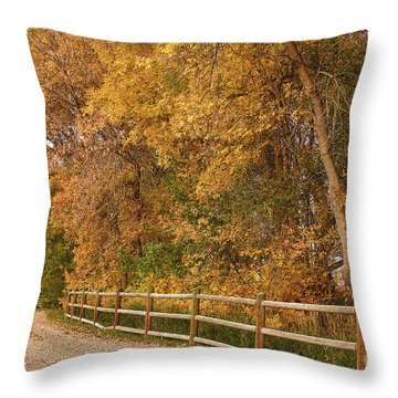 Autumn  Road To The Ranch Throw Pillow by James BO  Insogna