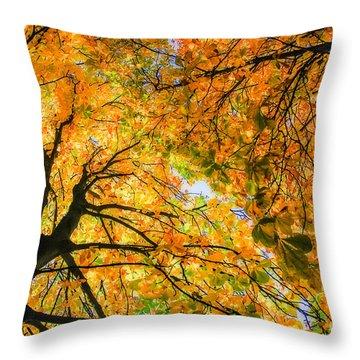 Autumn Sky Throw Pillow by Hannes Cmarits