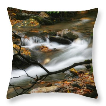 Throw Pillow featuring the photograph Autumn Spring by Joan Bertucci