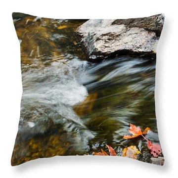 Throw Pillow featuring the photograph Autumn Stream by Cheryl Baxter