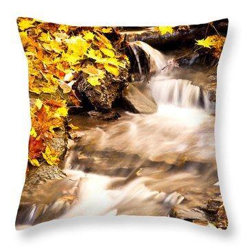 Autumn Stream No 1 Throw Pillow by Kamil Swiatek