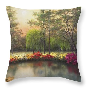 Autumn Sunset Throw Pillow by Diane Romanello