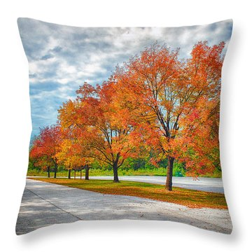 Autumn Trees At Busch Throw Pillow by Bill Tiepelman