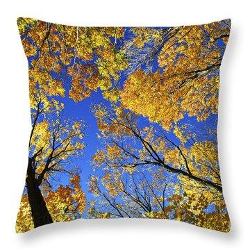 Autumn Treetops Throw Pillow by Elena Elisseeva