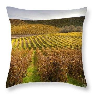 Autumn Vines Throw Pillow by Mike  Dawson