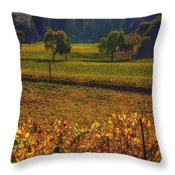 Autumn Vineyards Throw Pillow by Garry Gay